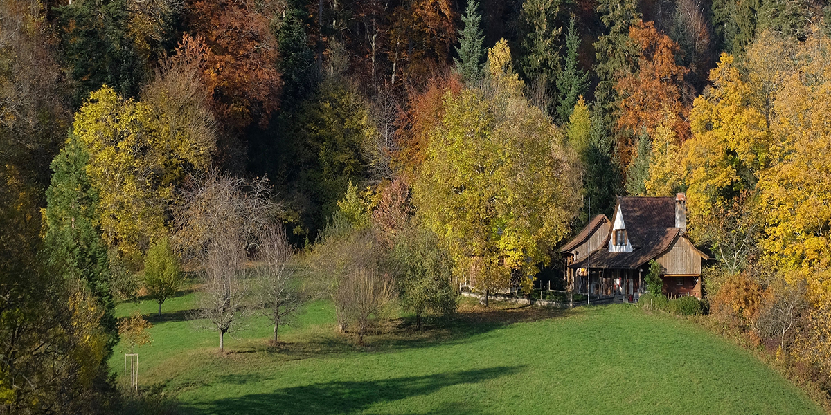 autumn-trees-in-kloster-schonthal, langenbruck, switzerland